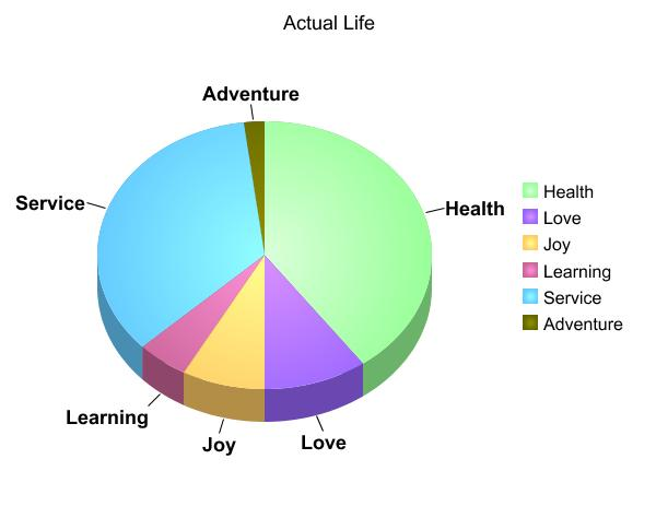 Actual Life Pie Chart